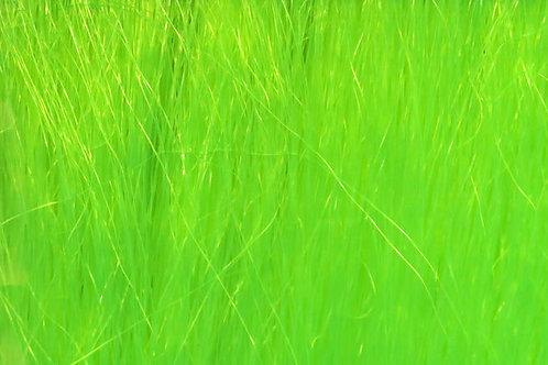 Chartreuse-Fishair 70 Denier