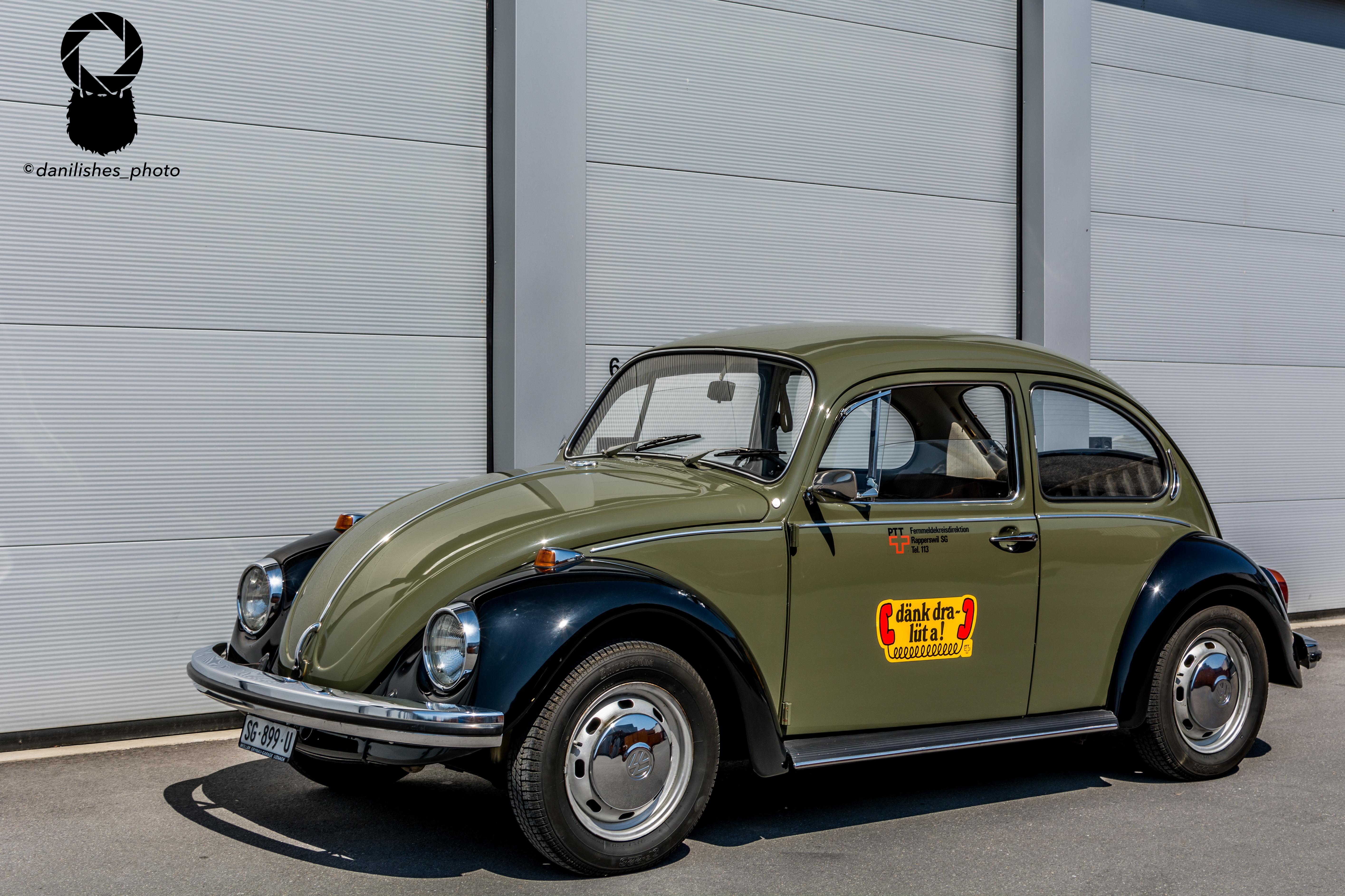 ...beetle...