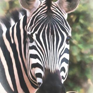 Tanzania-364-richberrett.jpg