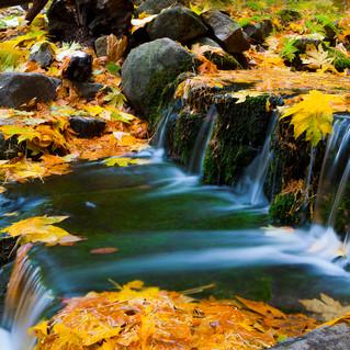 Yosemite's Fern Springs in Fall