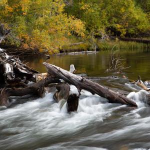 The Eastern Sierras offer spectacular seasonal views.