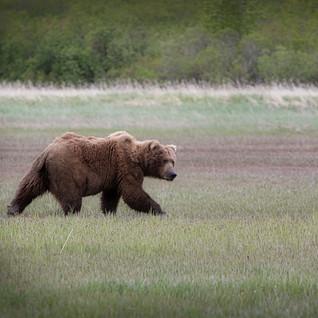 Alaska 2012-114-RichBerrett_Luminar4-edi