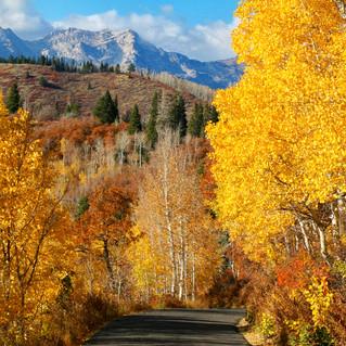 A Fall Road Less Traveled in Utah