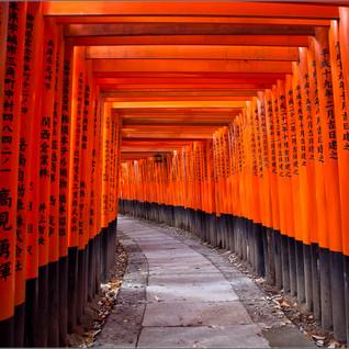 Kyoto Japan Toril