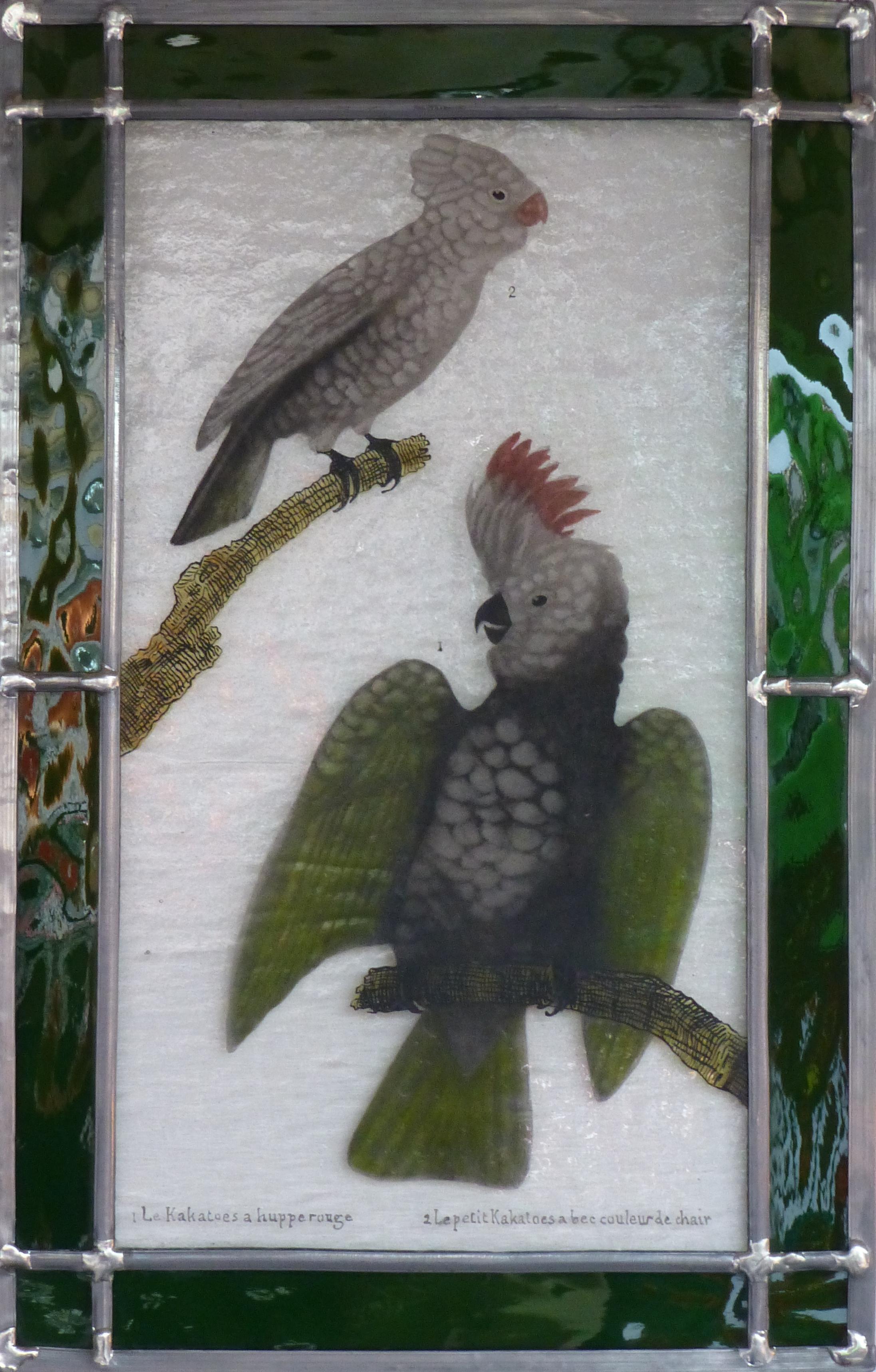 Vitrail Perroquets