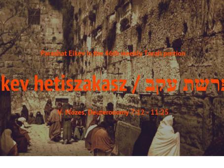 Ékev hetiszakasz, V.Mózes,  7:12 - 11:25
