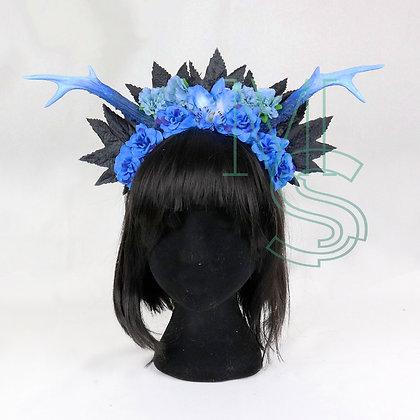 Coiffe Blue Liliopsida