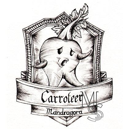 Caroteer