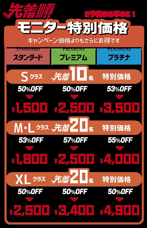 モニター特別価格表.png