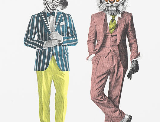 Tiger&Zebra