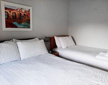 Snowdrop-beds.jpg