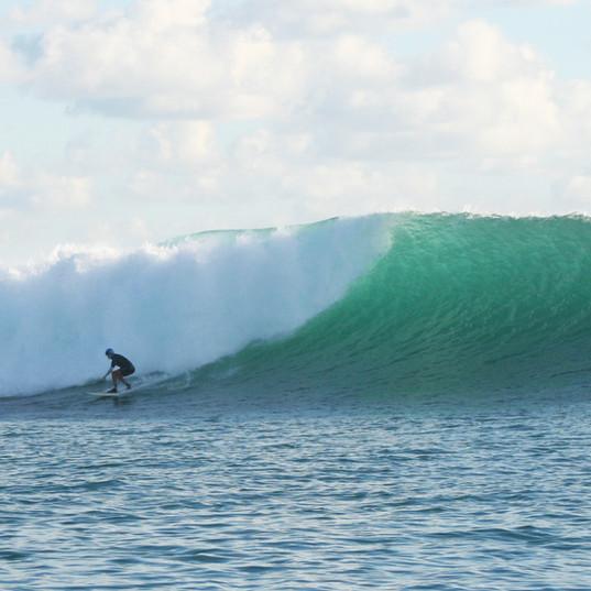Lombok Surf Marina Del Ray Gili Gede