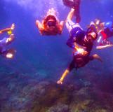 Snorkelling Gili Ashan.jpg