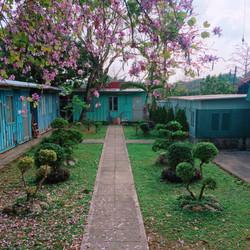 13)草坪 - 十架約翰祈禱園