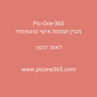 Pic-One-365