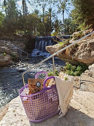 סלסילות פיקניק גולדה בחצר