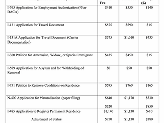 Department of Homeland Security Will Increase Immigration Filing Fees on October 2, 2020!