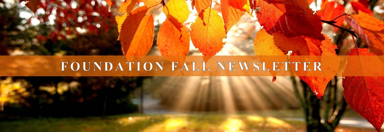 Foundation Fall Newsletter Header