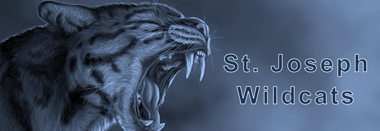 St. Joseph Wildcats Banner