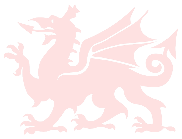 Welsh Dragon 10%.png
