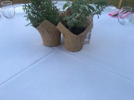 עציצי שולחן