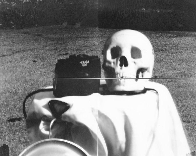 skull still life.jpg