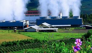 Ecologi 2.PNG