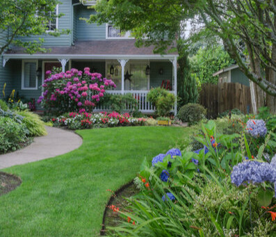 7 Energy-Efficiency Landscaping Ideas