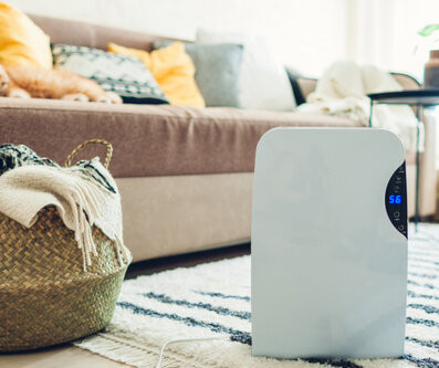 5 Benefits to Adding A Dehumidifier This Summer