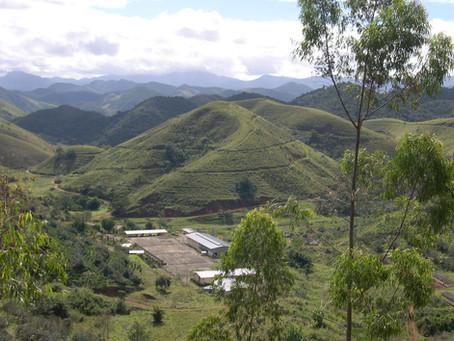 Empreendedorismo rural: por que investir no campo