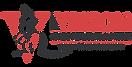 Vision Australia Logo png.PNG