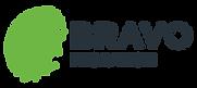 BRAVO_logo_positive_horizontal.png