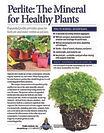 Perlite-for-Healthy-Plants-pdf-232x300.j