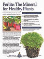Perlite-for-Healthy-Plants-pdf-232x300.j