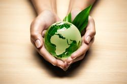 Environment Application of Perlite