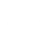 icon-brain.png