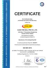 Elide Fire - certificat iso image.png
