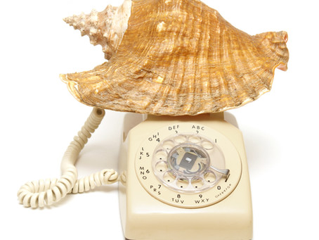 We have a new phone number! Call us at  (649) 333-DIVE!!