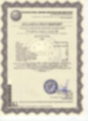 CE M1