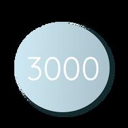 3000-circle.png