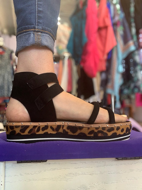 Eliquii adjustable platform size 10W