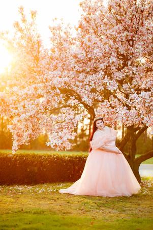 frau-tüllkleid-curvy-magnolienbaum-sonnenuntergang-verträumt
