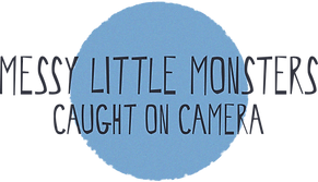 Messy Little Monsters Caught On Camera Button