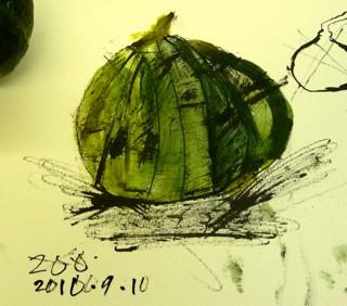 2010安芸かんさつが2.jpg