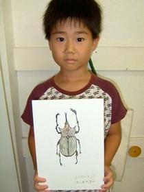 昆虫10.jpg