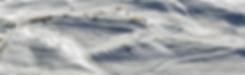 snow%20farm%20aerial%2006%2011082015_edi