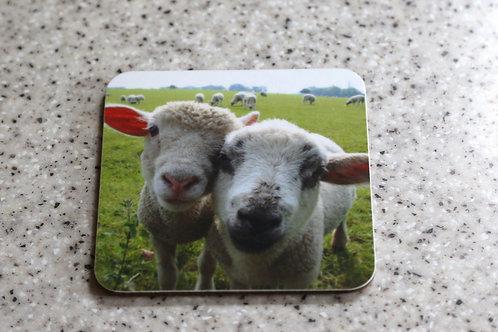 Sheep place mat
