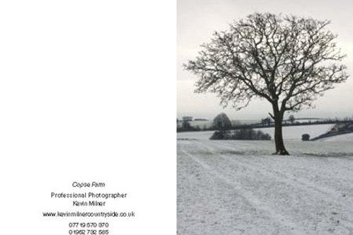Copse Farm Tree