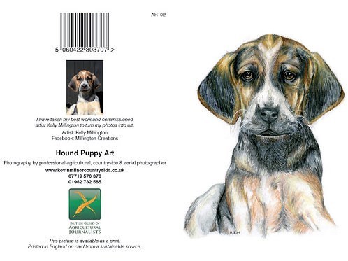 Hound Puppy Art