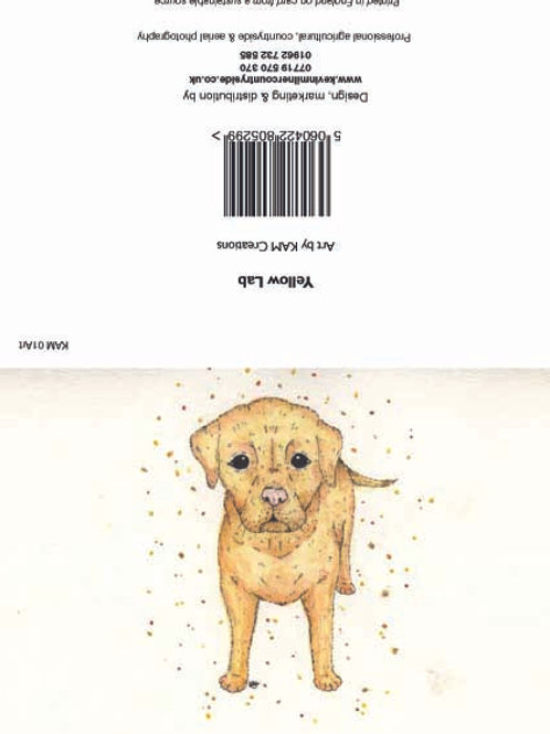 Yellow Lab art